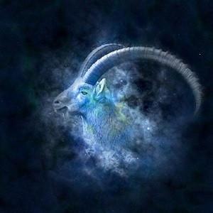 Né (e) sous le signe du Capricorne( 22 decembre-  2o janvier)