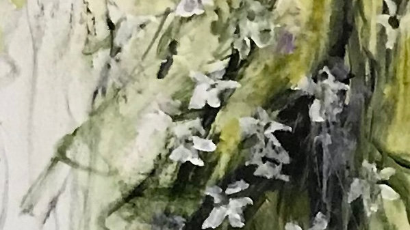 """Silver Lace Under Snow Flakes, 81""""x12"""""""