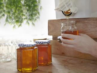 Hunaja on tehokas flunssalääke / Honung är en effektiv medicin mot förkylningssymptom