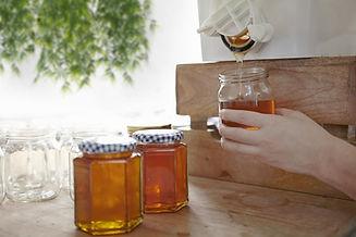 Honey Jars