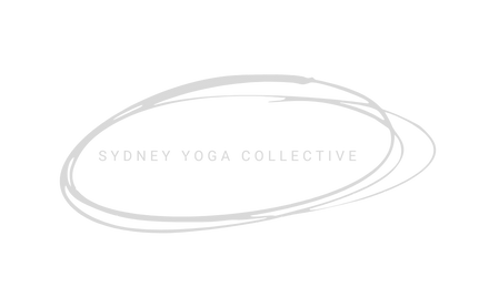 SYC Logo Transparent.png