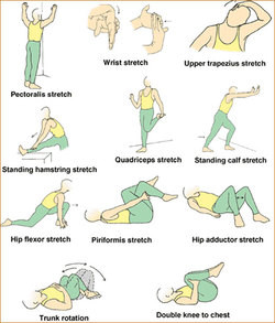 Beginners Exercise Practice To Avoid Mistakes and Injuries