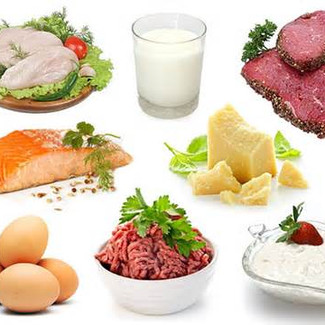 Protein, Your Body and Sources