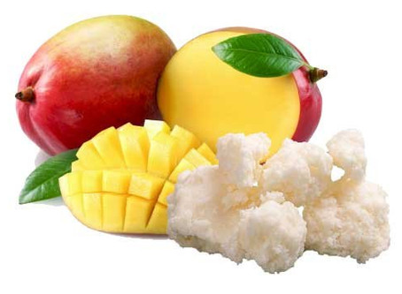 How Mango butter Benefits and help grow Healthy Natural Hair