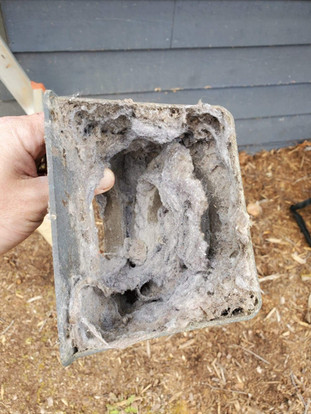 home dryer vent cleaning.JPG