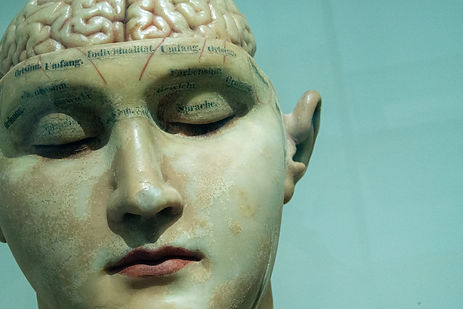 resting brain face