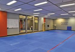 Martial Arts Room