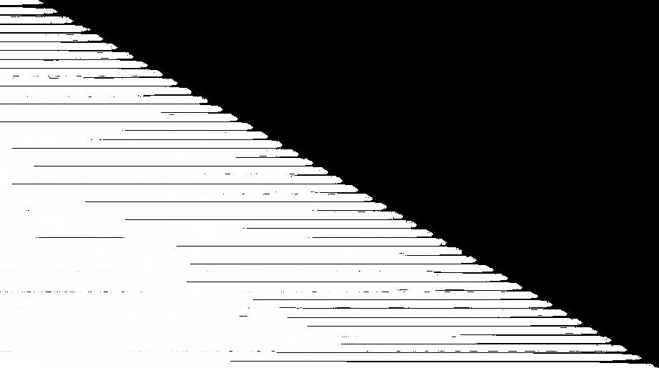stripes -2.png