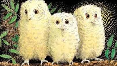 Owl Babies - Storytale Adventures