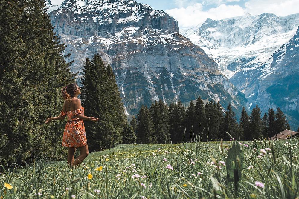 Switzerland Landscap