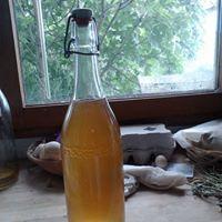 Recette vin d'acacia ou : nectar des elfes !