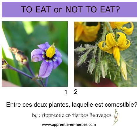 Nourriture ou Poison?