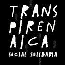 logo-transpirenaica-social-solidaria-br-