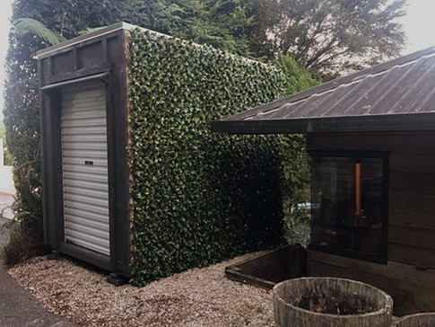 Amazing shed transformation