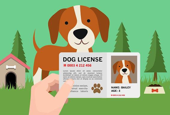 Dog License - Unsterilized Dog