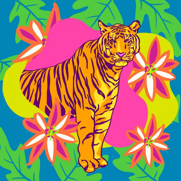 Tiger, 2/24/20
