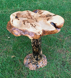 Maple burl accent table with burl pedastal base