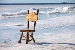 Burl Chair