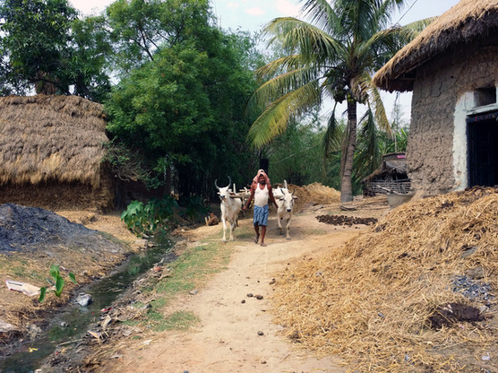 Santiniketan, India