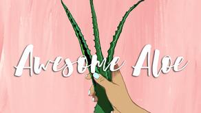 Awesome Aloe - Aloe Bio-Cellulose Face Mask Review