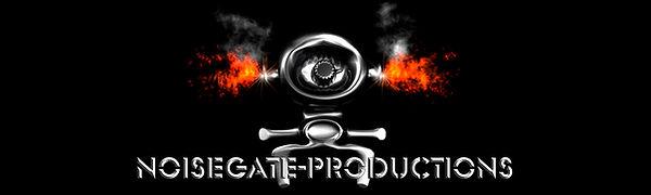 Banner Noisegate Procuctions and Managment / Metalband Vinegar Hill / Austrian Artist