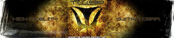 Banner TWSP Amps and Cabinets / Metalband Vinegar Hill / Austrian Artist