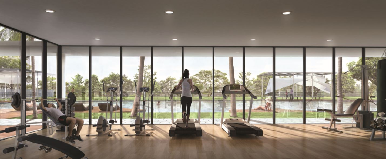 The terrace gym