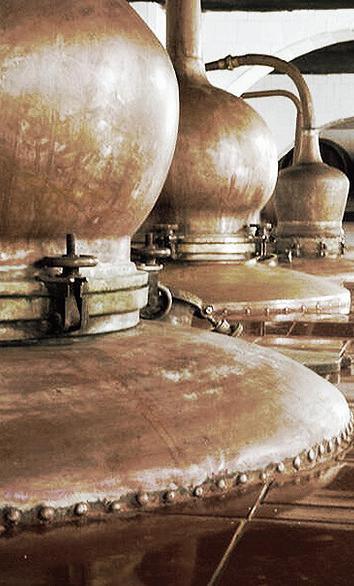 Mahon gin ditillers, Premium gin, Xoriguer, Traditional gin, Artisanal gin