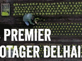 Potager du toit du Delhaize sur le WORLD ECONOMIC Forum