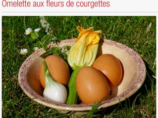 Une recette facile à la hauteur de ces magnifiques fleurs de courgettes toutes fraîche...