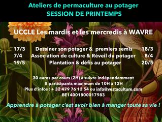 Ateliers de potager en permaculture au fil des saisons...