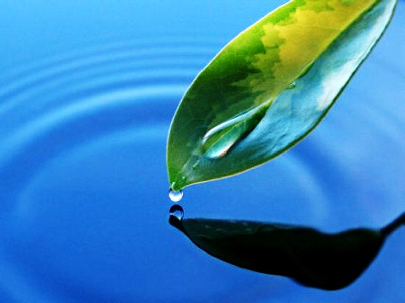 eau4.jpg
