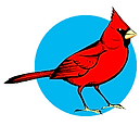 Cardinal With Blue.png