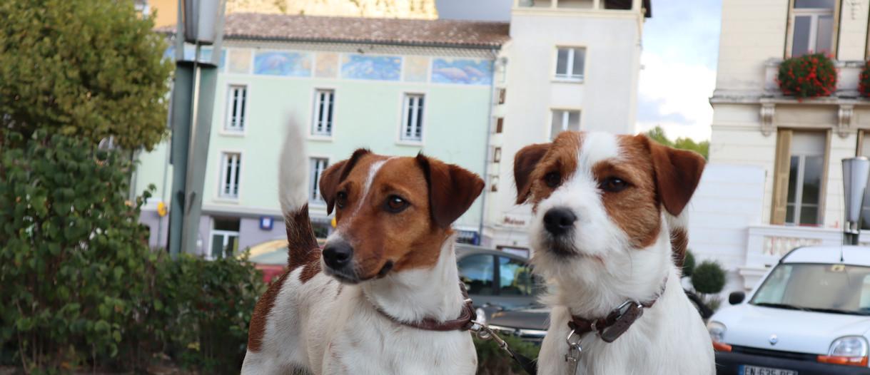 Op vakantie in Frankrijk, Castellane
