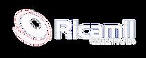 Ricamil Engenharia LOGO_Ricamil_site_bra