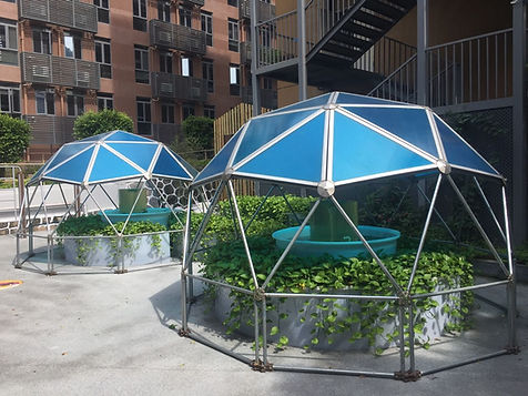 geodesic dome built in a Shenzhen China