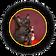 Котята уральских рексов