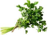 Parsley@0.5x.png