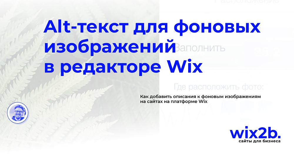 SEO для Wix