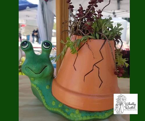Ceramic Snail Planter Kit!
