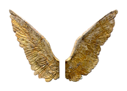 Wings - Cut Out (1).png