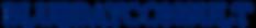 bluebayconsult_short_blau.png