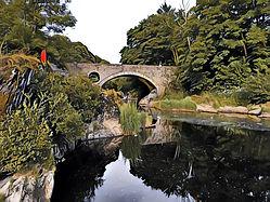 Cenarth Bridge 1.JPG