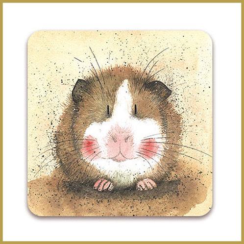 Alex Clark Coaster C53 Gilbert Guinea Pig