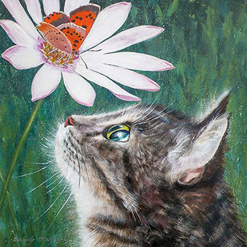 Beverly Madley Cat