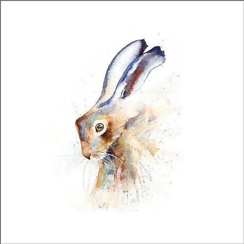 Rachel Toll Brown Hare