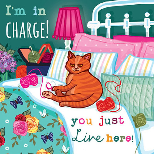 Angie Spurgeon I'm In Charge