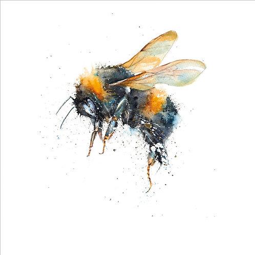 Rachel Toll Bumblebee