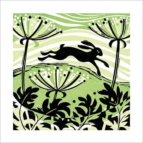 Manda Beeching Hillside Hare