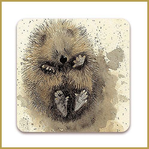 Alex Clark Coaster C52 Prickles Hedgehog